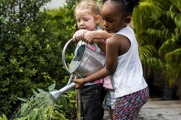 Two children using watering can to water flowers