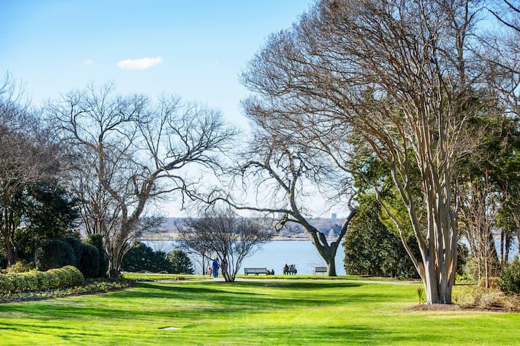 White Rock Lake near arboretum trees
