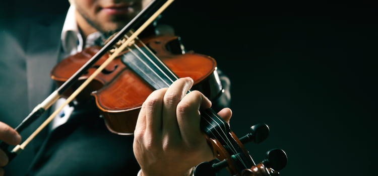 a violinist places his fingers on the neck of the violin and positions the bow