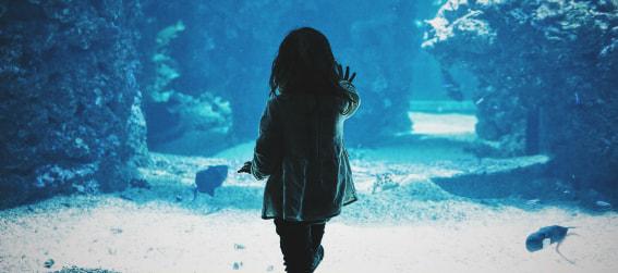 little girl at the Dallas World Aquarium