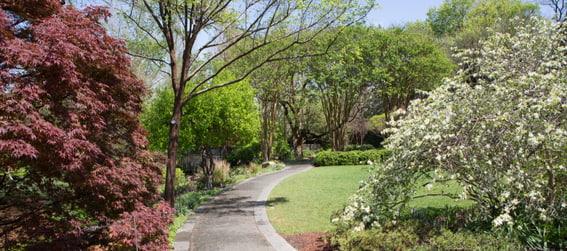 walkway at the Dallas Arboretum & Botanical Gardens
