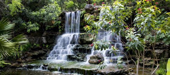 waterfall at the Zilker Botanical Garden